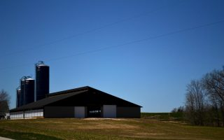freestall-barn07