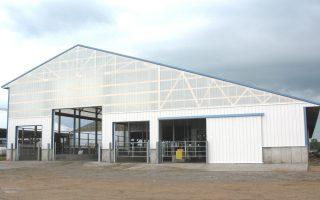 freestall-barn10